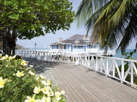 Отель Sandals Halcyon Beach 4*,