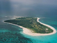 Отель Bird Island Resort 4*,